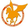 ペガサス引越センターロゴ